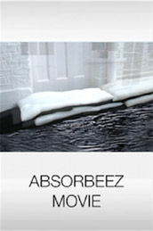 ABSORBEEZ MOVIE